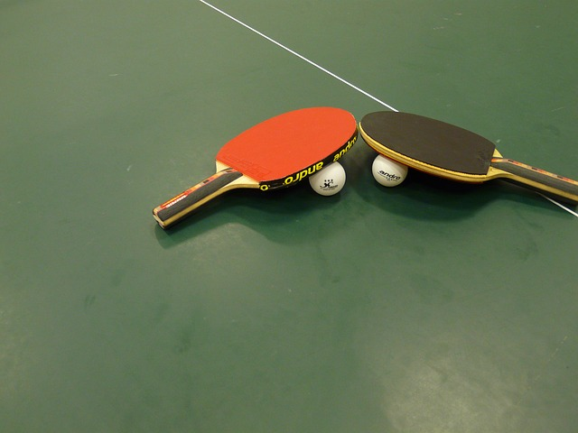 table tennis 815710 640